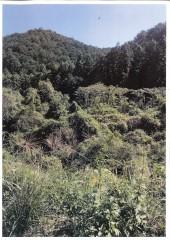 【DS】FIT18円 三重県北牟婁市紀北町長島【10005】発電所のメイン画像