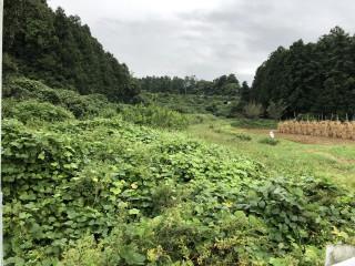 【TS】FIT18円 宮城県桃生町倉埣山居発電所のサブ画像
