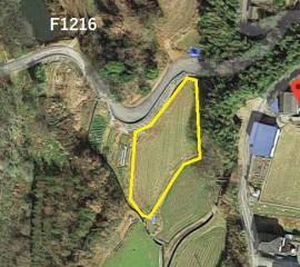 【SHO】FIT14円 徳島県 F1216【込みこみ1340万円】出力抑制保証付き物件のメイン画像