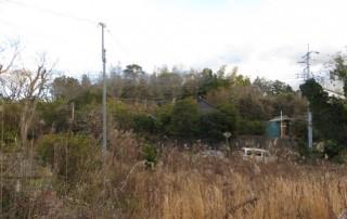 【AIN】 沢 低圧太陽光発電所のサブ画像