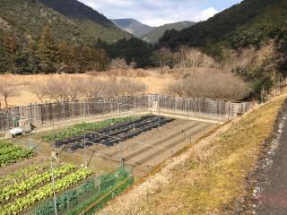 【RE】FIT24円 和歌山県小川第二発電所のメイン画像