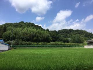 【HH】FIT21円赤磐市殿谷発電所のメイン画像