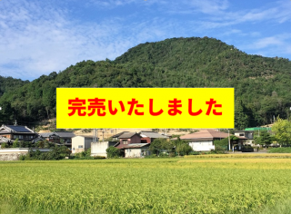 <O-82>兵庫県三田市下青野発電所 FIT32円のメイン画像