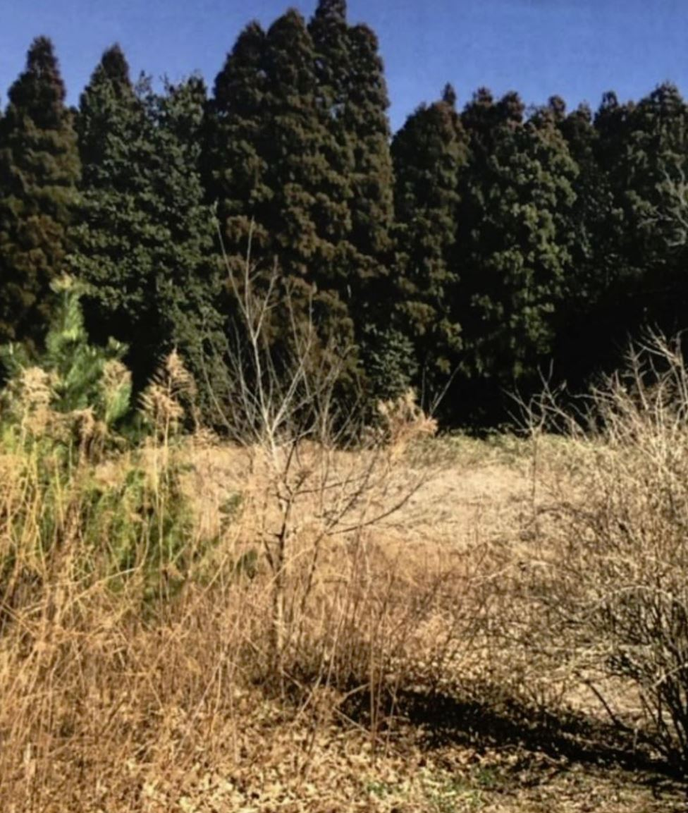 【HV】FIT21円 茨城県龍ケ崎市発電所のメイン画像