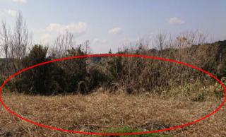 【HB】FIT24円 三重県多気郡西池上発電所のメイン画像
